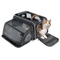 μεταφορά γάτας