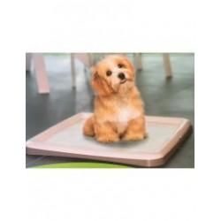 Βάση για πάνες εκπαίδευσης 60cm*60cm εκπαιδευση Pet Shop Καλαματα